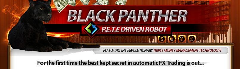 Ivybot forex trading robot reviews 6 5