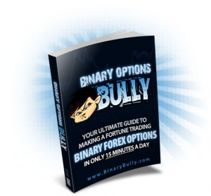 binary options bully